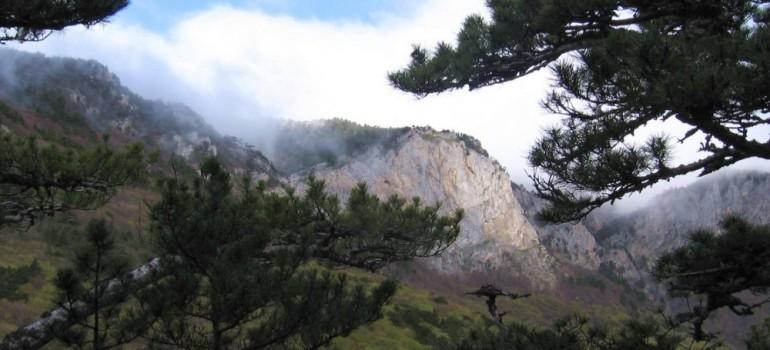 Ялтинский горно-лесной заповедник в Крыму