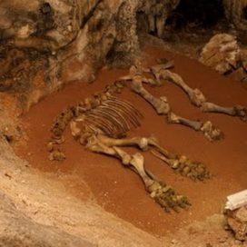 Пещера Эмине-Баир-Хосар (Мамонтовая пещера)